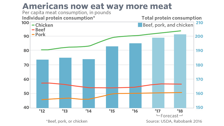 Is Meat Sustainable?